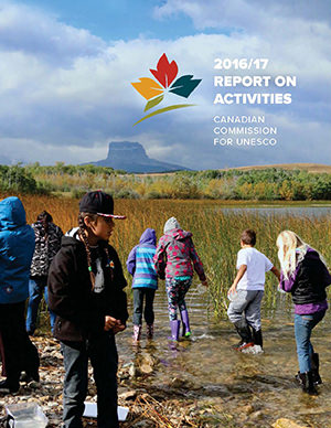 Report on Activities 2016-2017